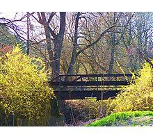 Bridge to Upper Trail Photographic Print
