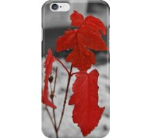 Red Leaf on a Grey Day iPhone Case/Skin