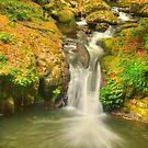 Bunyip Falls .. Portrait View by Michael Matthews
