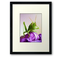 Oh,my God Framed Print