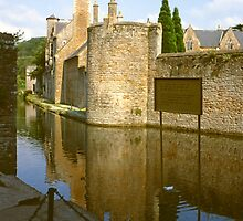 The Moat, Bishop's Palace, Wells by Priscilla Turner