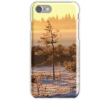 29.12.2014: Winter Morning at Torronsuo National Park iPhone Case/Skin