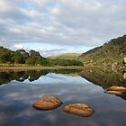 Tidal River Reflections by Catherine Davis