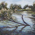 Flooding on Queenscliff Lagoon by Terri Maddock