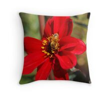 Red Whimsy Throw Pillow