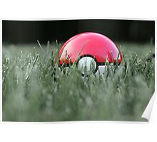 Pokeball in Grass Poster