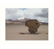 Bolivia, wind erosion Art Print