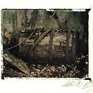 Derelict Train Station - Barrel by Steven Godfrey
