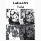 Labradors Rule by DonnaM
