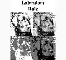 Labradors Rule Mens V-Neck T-Shirt