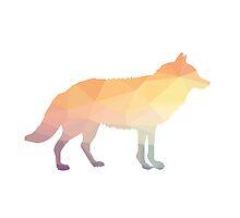 Colorful fox by AnnaGo