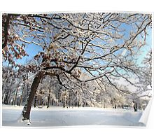 Winter day in New York City  Poster