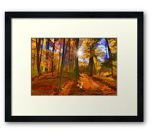 Brilliant, Colorful Autumn Forest Impression Framed Print