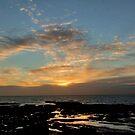 Rockpool Dawn by Jenn Ridley