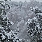 Snowfall by HELUA