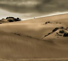 Dune mood by Peter Wickham