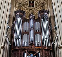 The Bath Abbey's Organ by Nicole Petegorsky