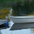 Udden Lake Boat and Mooring by Tim Fenton