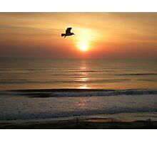 Sunrise and Seagulls Photographic Print