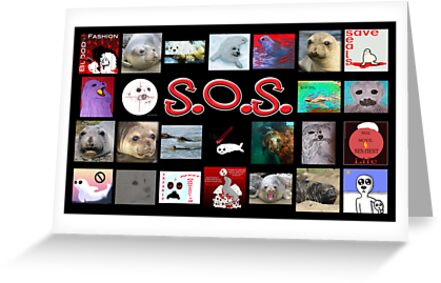 Save Our Seals, Part II by Voices4Animals