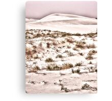 Scrub Brush Canvas Print