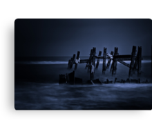 In the Moonlight Canvas Print