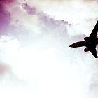 Alaska Jet by jhorsager
