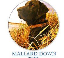 Mallard Down - Saw Grass Black Lab by mallarddown