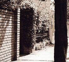 Haus xvi by Sylvia Karall