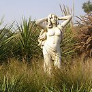 Decorative statue for gardens by oiseau