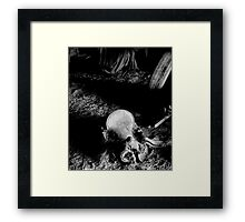 Passing Into History Framed Print