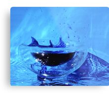 Dolphin in a small world Metal Print