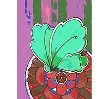 turquoise butterfly Photographic Print