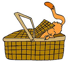 Cat In Picnic Basket by kwg2200