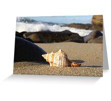 Sea Shores Greeting Card