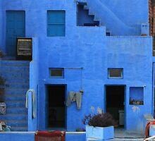 brahmin blue by Rae Stanton