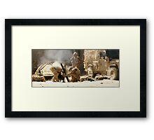 mortar Framed Print