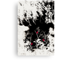 Life after Death Canvas Print