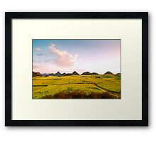 Canolas in Luo Ping Framed Print