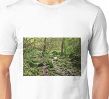 Woodland in Northern End of Monk's Dale Unisex T-Shirt