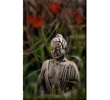 Springtime in Buddhaland Photographic Print