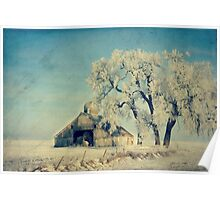 Frosty Day Poster