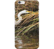 Great Egret iPhone Case/Skin