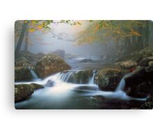 TOUCHING CALM* Canvas Print