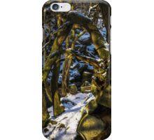 Padley Gorge Winter iPhone Case/Skin