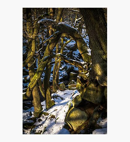Padley Gorge Winter Photographic Print