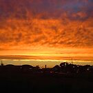 Burning Sky by Christina Reid