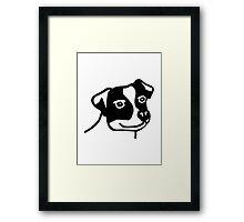 Jack Russel Framed Print
