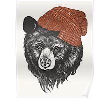 zissou the bear Poster