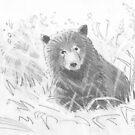 Grizzly Bear Cub Drawing by MikeJory